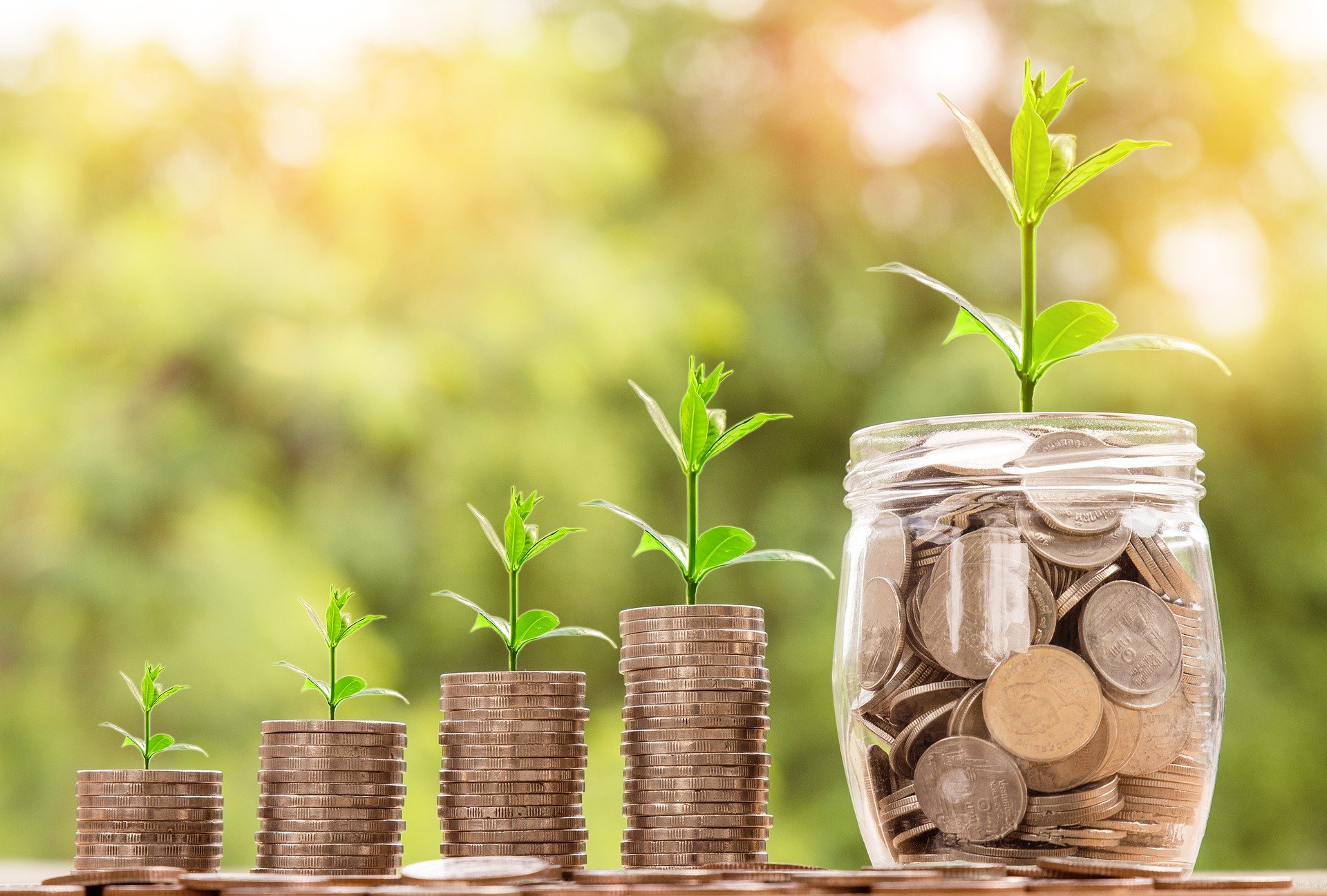 Government launches small business micro loan scheme